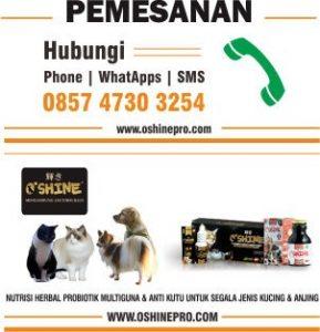Info Pemesanan Oshine Probiotik