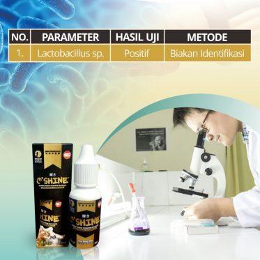 uji lab oshine nutrisi probiotik