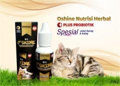 Oshine Nutrisi